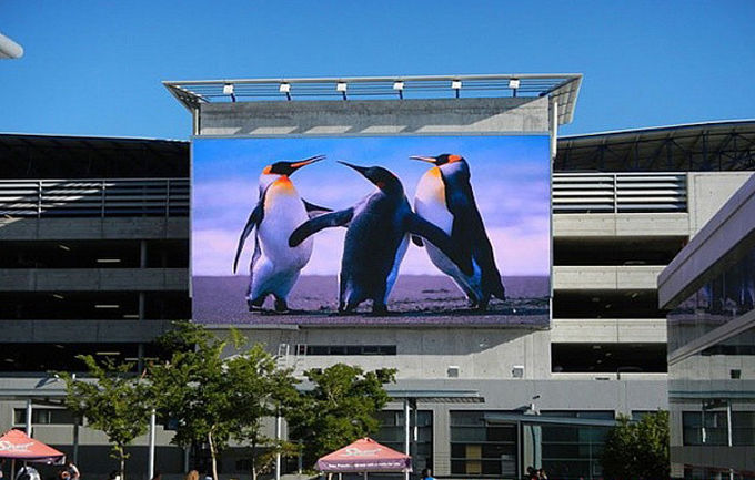 HD Video Full Color Outdoor Advertising Led Display P8 256 * 128mm Big Screen
